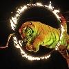 Цирки в Арске